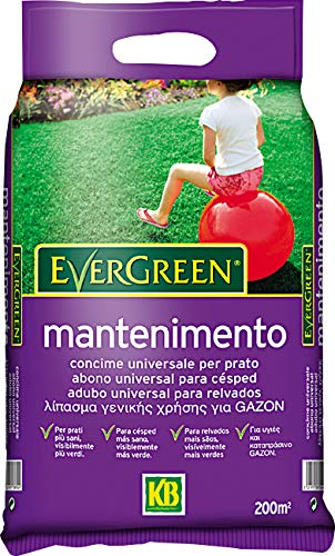 KB Concime Evergreen Mantenimento, 4kg