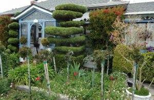 giardino curato di casa