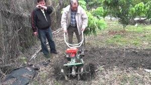 lavorare la terra con la motozappa
