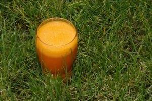 succo di carota Casina Mia 300x200 - La Migliore Centrifuga secondo consumatori ed esperti