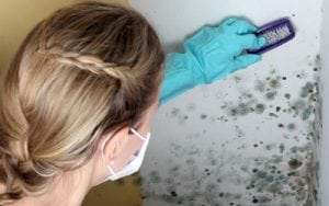 Eliminare la muffa sui muri con la candeggina