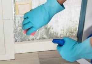 Eliminare la muffa sui muri con la candeggina - Eliminare condensa in casa ...