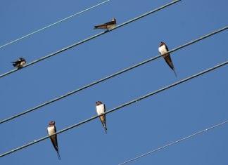 Arredare una mansarda bassa casina mia - Spostamento cavi telecom dalla facciata di casa ...