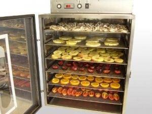 essicatore hyppocampus 300x225 - Essiccatore per alimenti quale è meglio comprare?