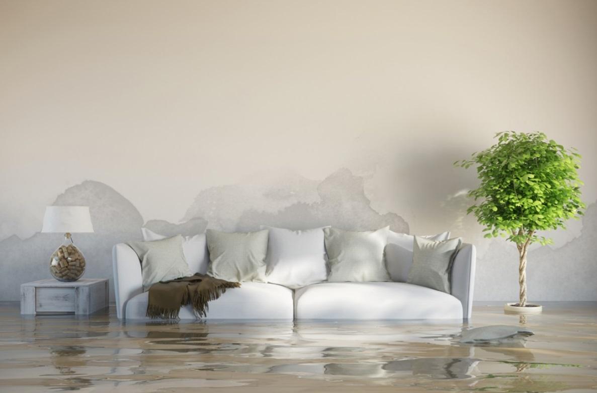 Come eliminare l 39 umidit di risalita dai muri casina mia - Come togliere l umidita in casa ...