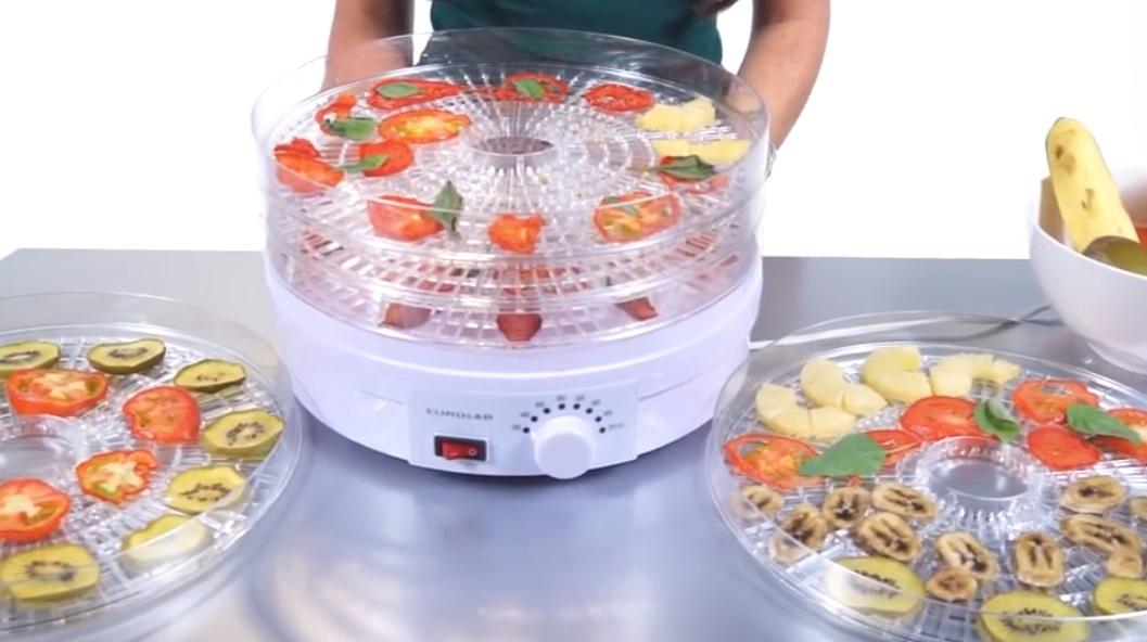 essiccatrice con frutta - Essiccatore per alimenti quale è meglio comprare?