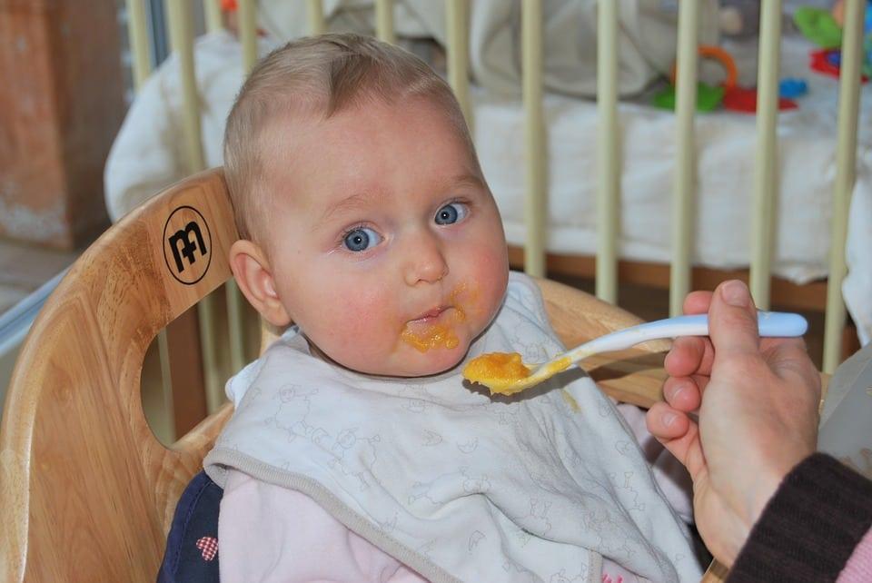 omogenizzato fresco - Omogeneizzatore – I migliori per preparare una pappa sana al tuo bambino