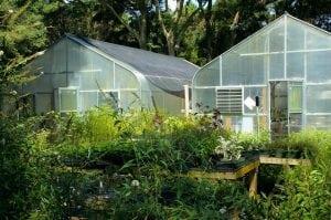 Giardino Grande con Due Serre 300x199 - Serra in policarbonato: come scegliere quella più adatta alle proprie esigenze