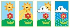 Protezione dal Sole e Pioggia 300x123 - Serra in policarbonato: come scegliere quella più adatta alle proprie esigenze