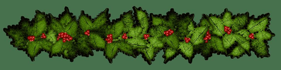 pungitopo per le decorazioni natalizie - Pungitopo coltivazione: come coltivare la pianta decorativa del Natale dai grandi benefici ed usi insospettabili