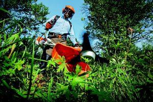 giardiniere che taglia lerba 300x200 - Miglior tagliaerba elicoidale: guida alla scelta del modello più idoneo per il vostro prato