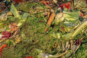 compost da riciclare 300x200 - La miglior compostiera da giardino per creare un ottimo fertilizzante naturale