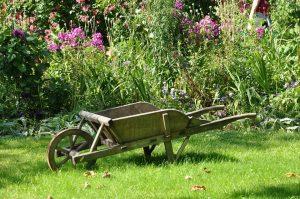 cura di un giardino bio 300x199 - La miglior compostiera da giardino per creare un ottimo fertilizzante naturale