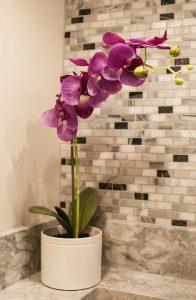piante da arredamento 196x300 - Bagno moderno: idee e consigli per progettare un bagno unico e personale