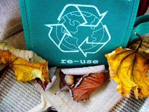 riciclare gli scarti del giardino 300x225 - La miglior compostiera da giardino per creare un ottimo fertilizzante naturale