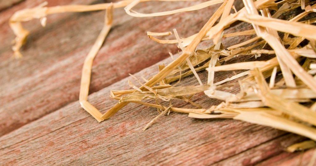 Case bioedilizia legno paglia