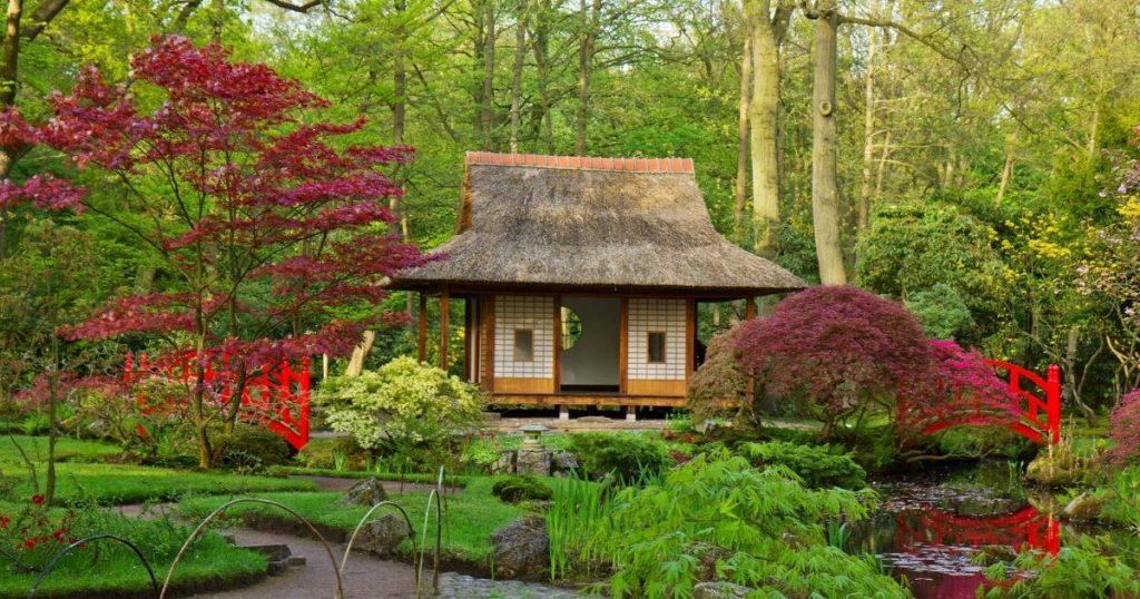 giardino zen acero
